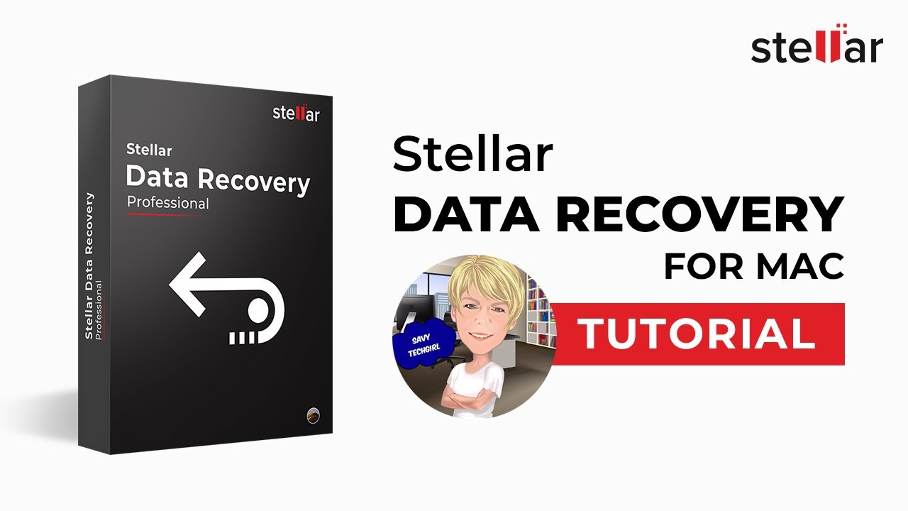 Stellar Data Recovery Professional 10.0.0.3 Crack [2020] Free Download