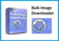 Bulk Image Downloader 5.71.0 Crack + Torrent (Latest) Free Download